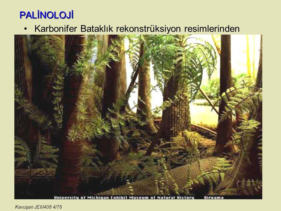 Karbonifer Bataklık rekonstrüksiyon resimlerinden