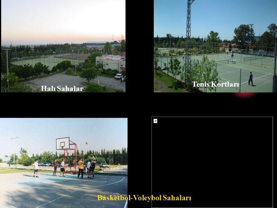 Basketbol-Voleybol Sahaları
