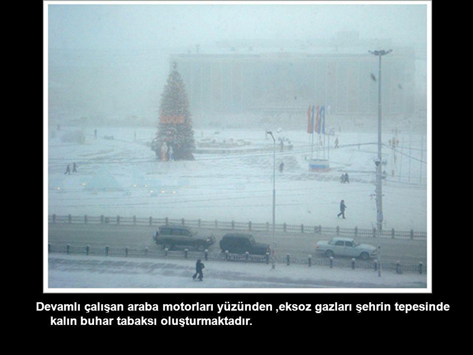 Devamlı çalışan araba motorları yüzünden ,eksoz gazları şehrin tepesinde kalın buhar tabaksı oluşturmaktadır.