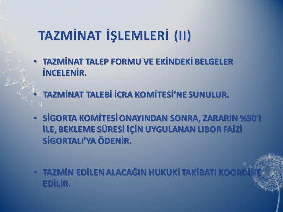 TAZMİNAT İŞLEMLERİ (II)