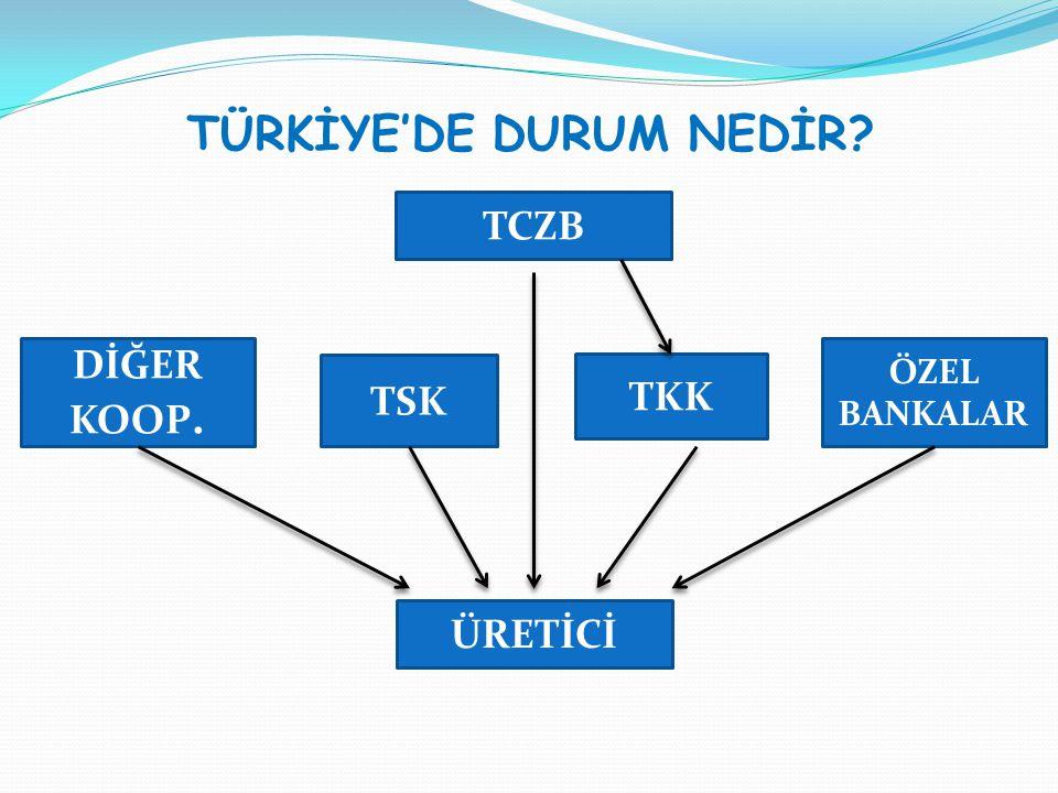 TÜRKİYE'DE DURUM NEDİR