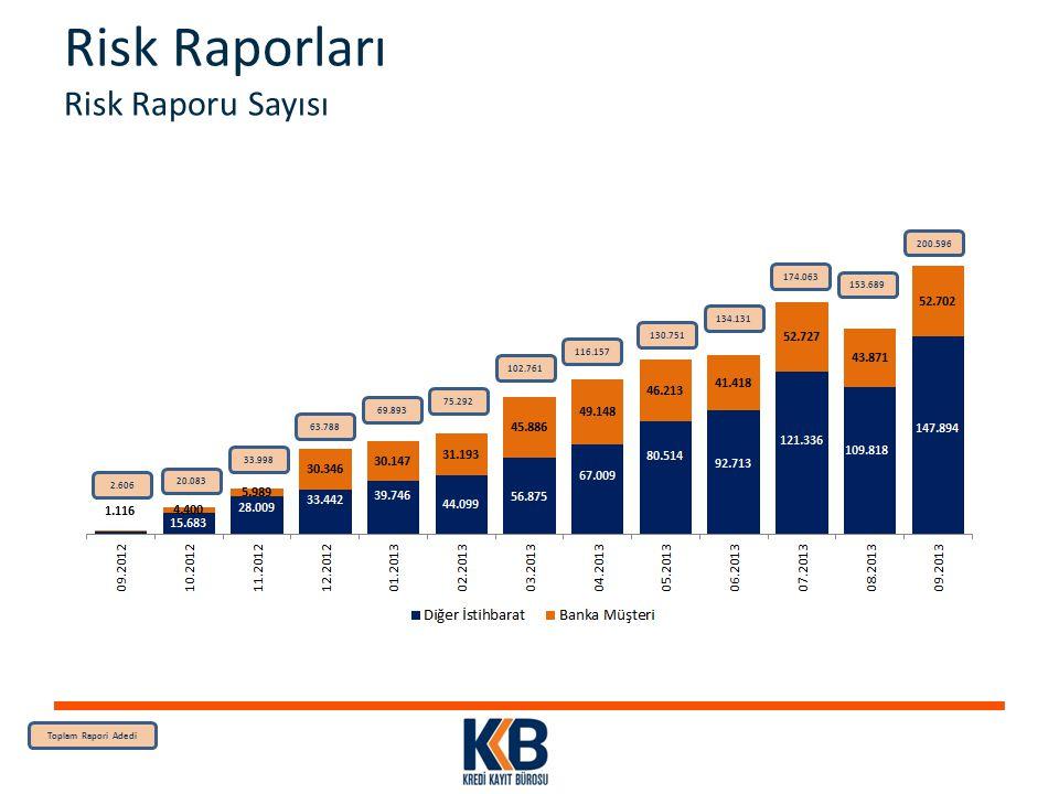 Risk Raporları Risk Raporu Sayısı
