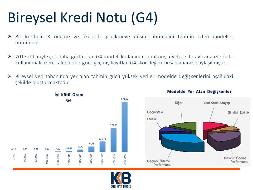 Bireysel Kredi Notu (G4)