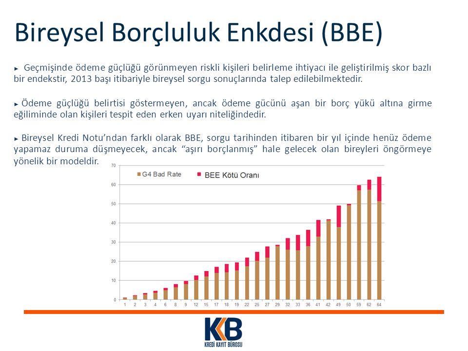 Bireysel Borçluluk Enkdesi (BBE)