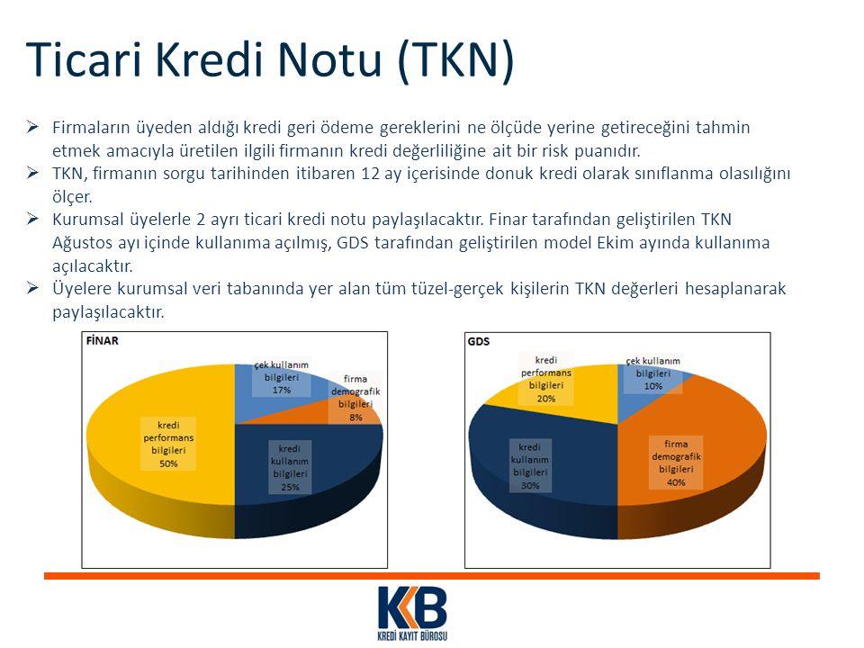 Ticari Kredi Notu (TKN)