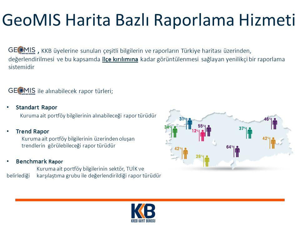 GeoMIS Harita Bazlı Raporlama Hizmeti