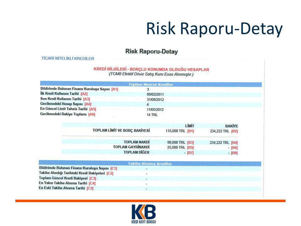 Risk Raporu-Detay