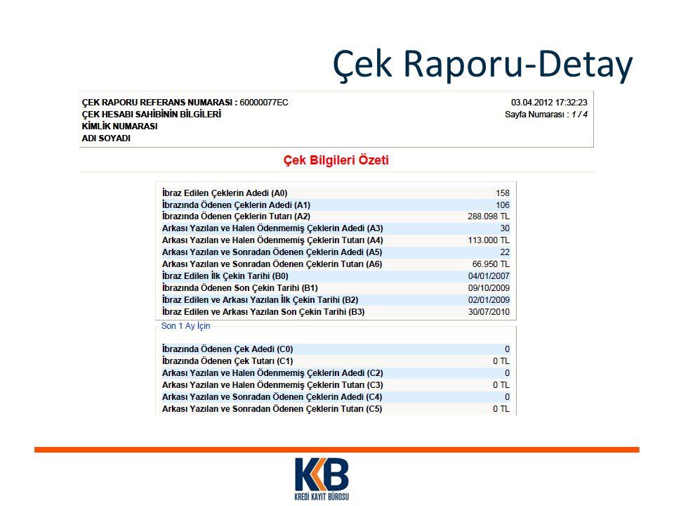 Çek Raporu-Detay