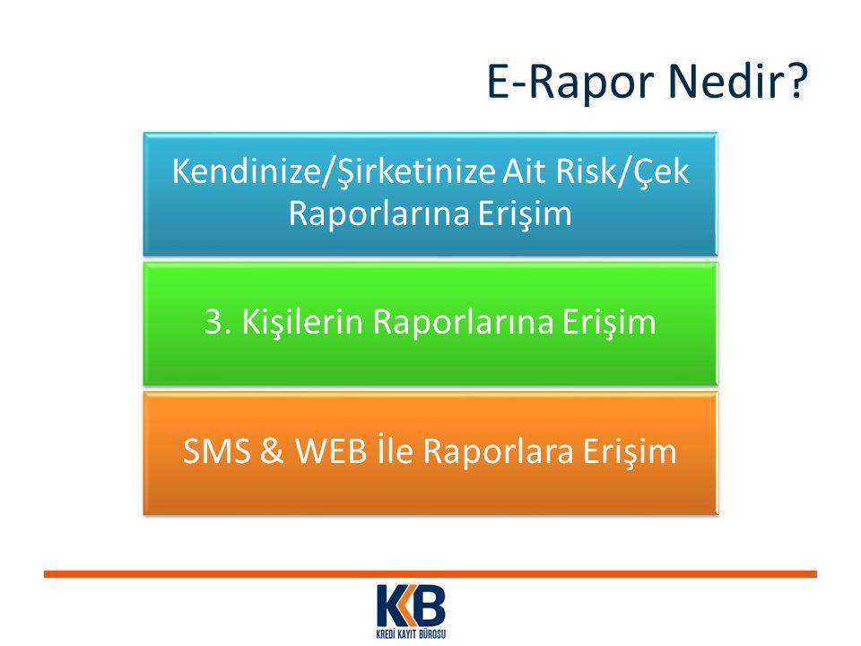 E-Rapor Nedir Kendinize/Şirketinize Ait Risk/Çek Raporlarına Erişim