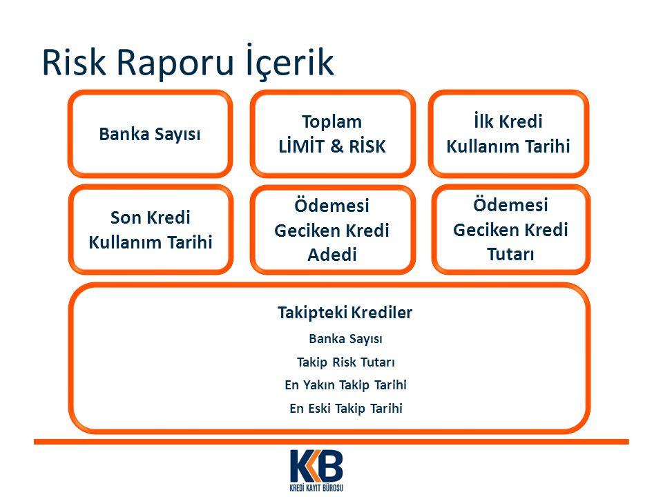 Risk Raporu İçerik Banka Sayısı Toplam LİMİT & RİSK
