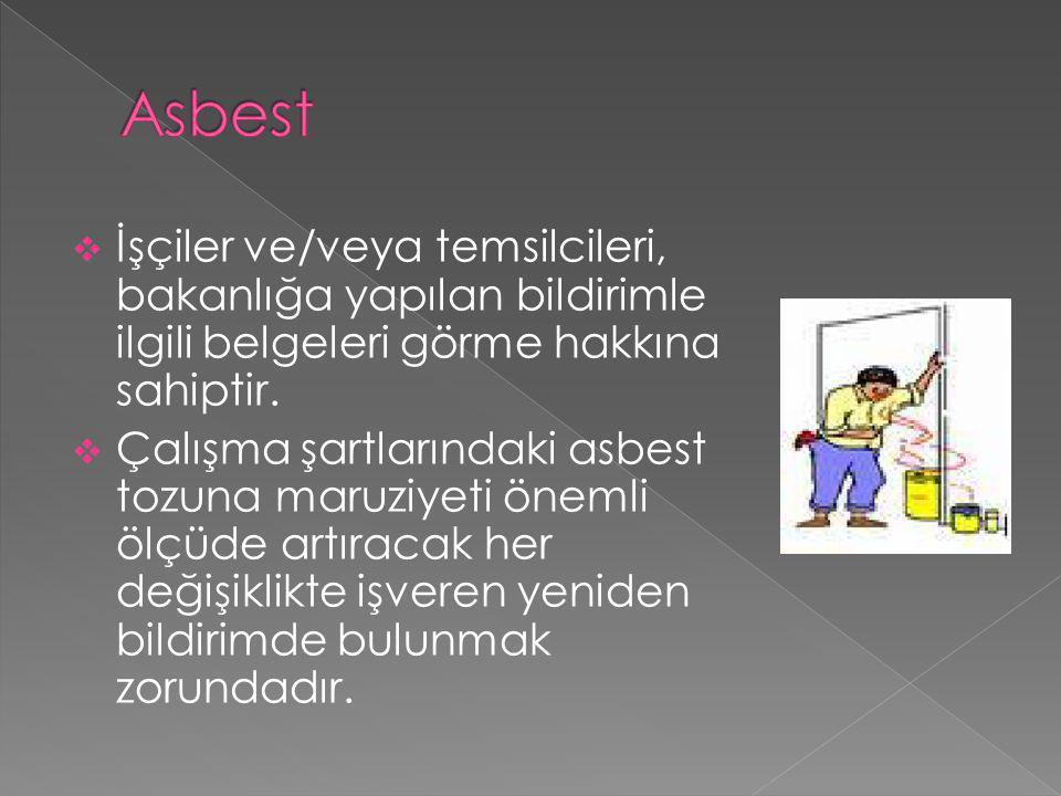 Asbest İşçiler ve/veya temsilcileri, bakanlığa yapılan bildirimle ilgili belgeleri görme hakkına sahiptir.