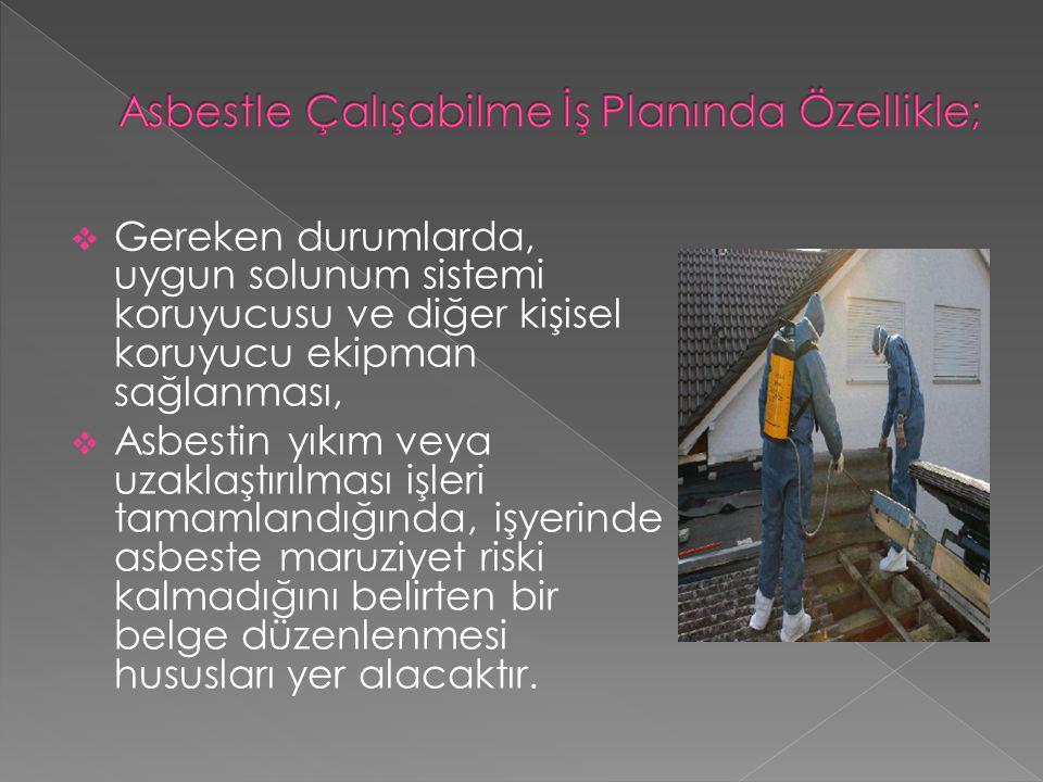 Asbestle Çalışabilme İş Planında Özellikle;