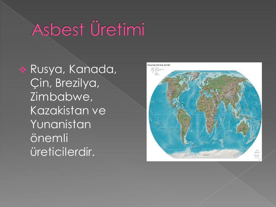 Asbest Üretimi Rusya, Kanada, Çin, Brezilya, Zimbabwe, Kazakistan ve Yunanistan önemli üreticilerdir.