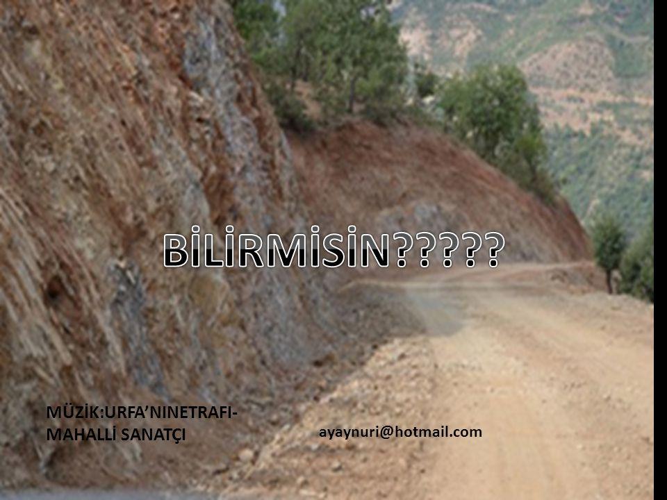 BİLİRMİSİN MÜZİK:URFA'NINETRAFI-MAHALLİ SANATÇI