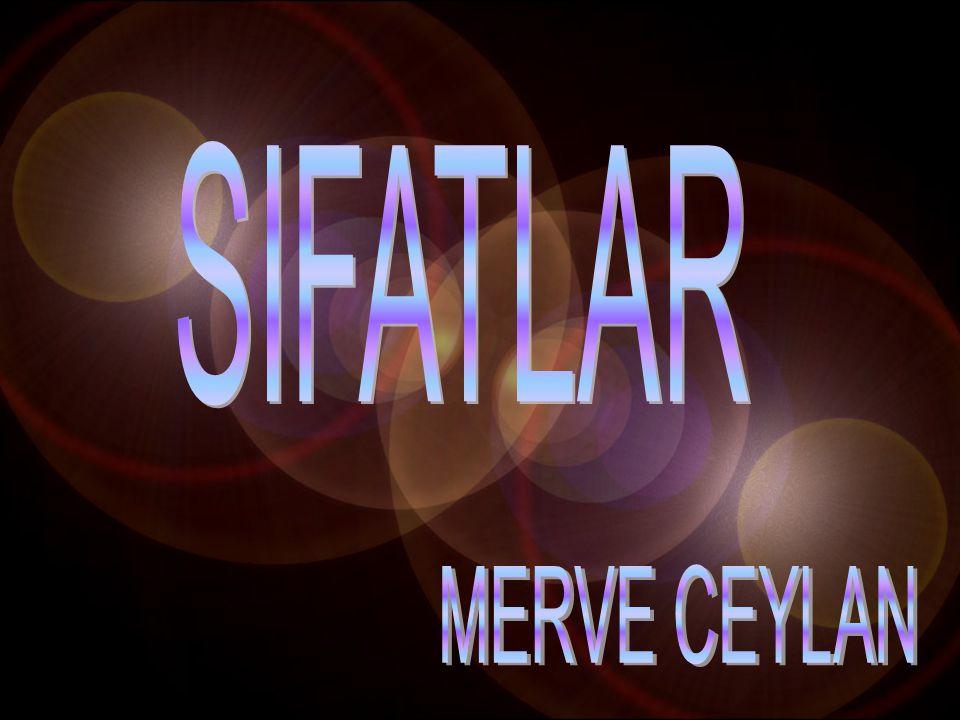 SIFATLAR MERVE CEYLAN