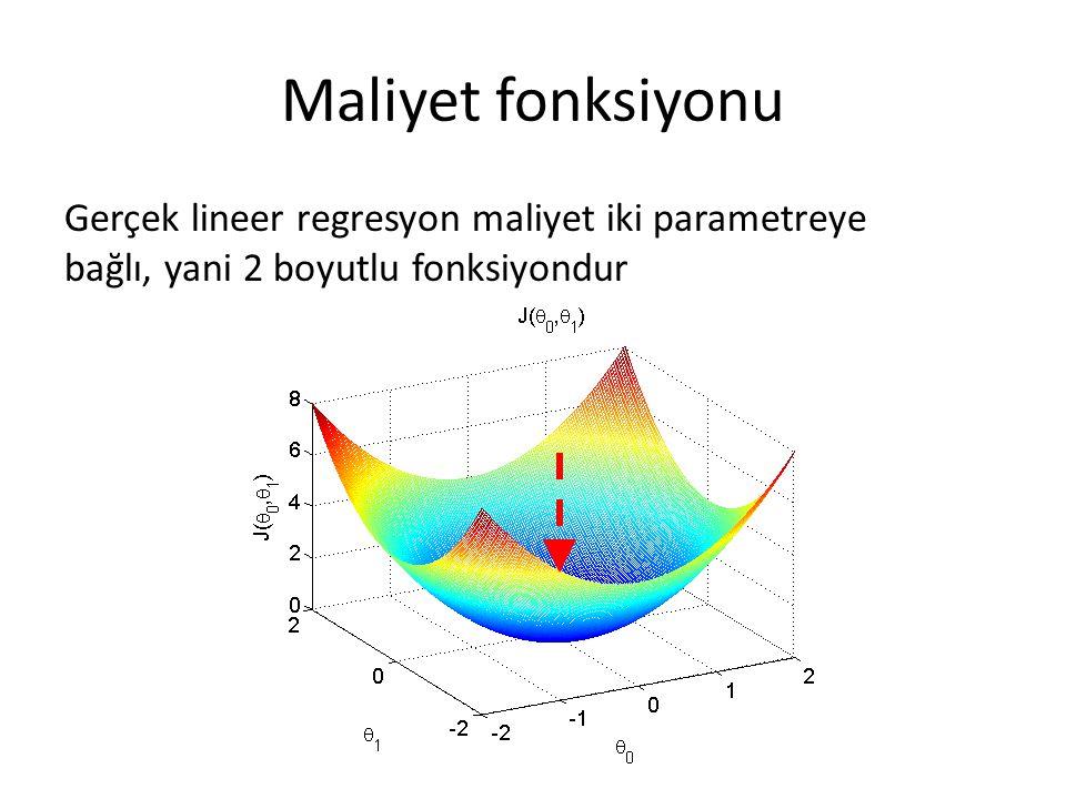 Maliyet fonksiyonu Gerçek lineer regresyon maliyet iki parametreye bağlı, yani 2 boyutlu fonksiyondur.