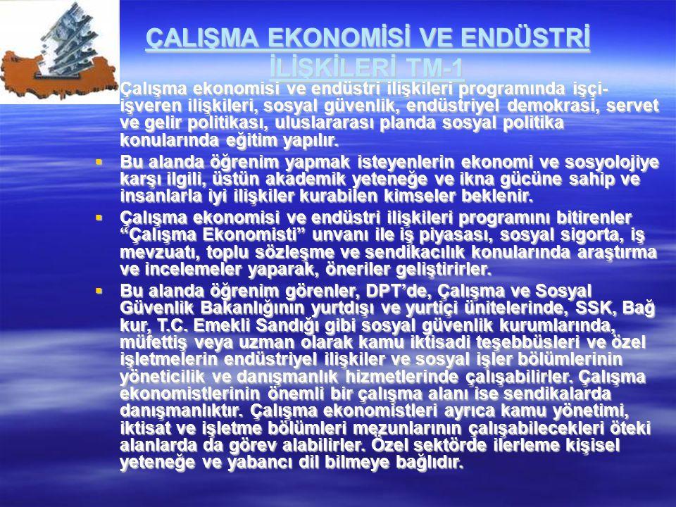 ÇALIŞMA EKONOMİSİ VE ENDÜSTRİ İLİŞKİLERİ TM-1