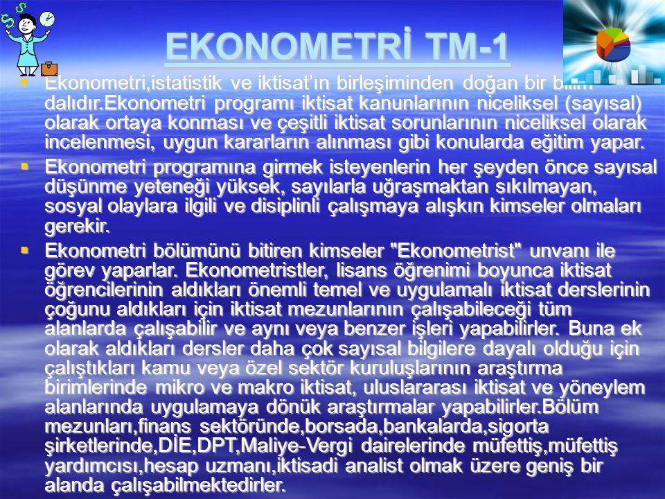 EKONOMETRİ TM-1