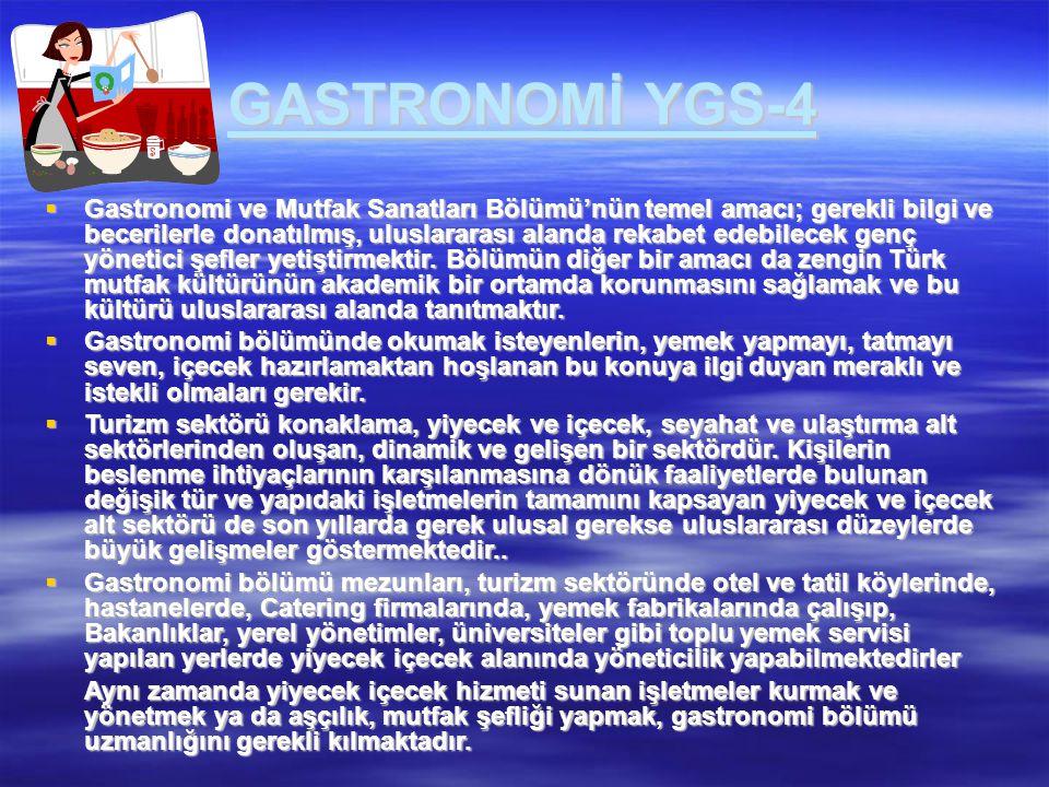 GASTRONOMİ YGS-4