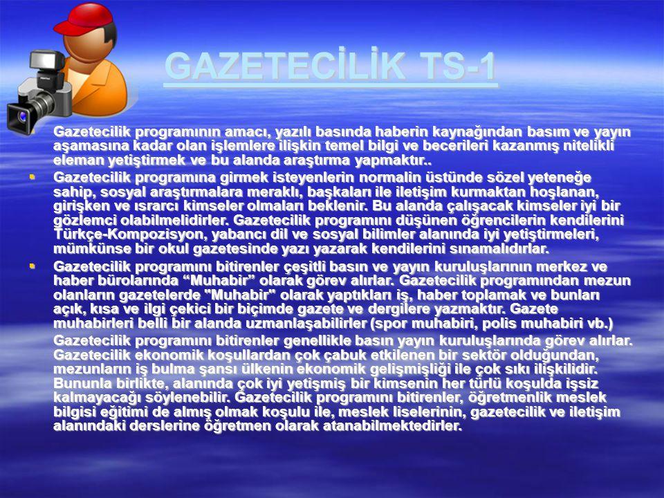 GAZETECİLİK TS-1