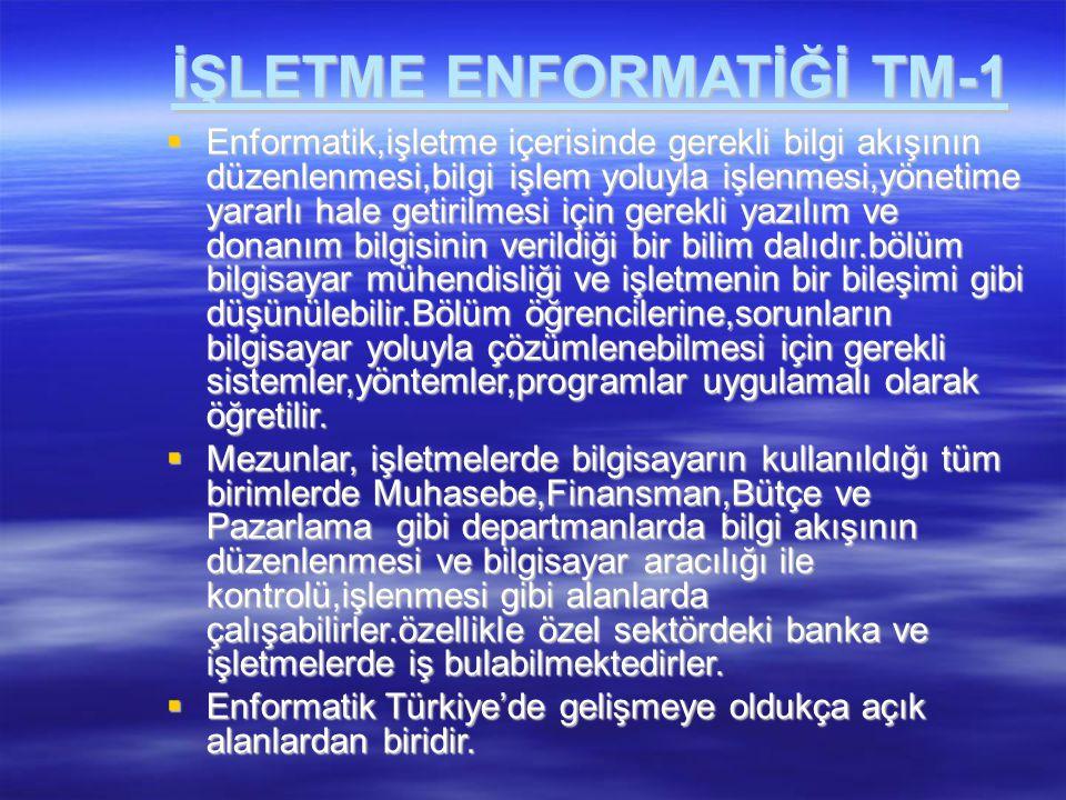 İŞLETME ENFORMATİĞİ TM-1