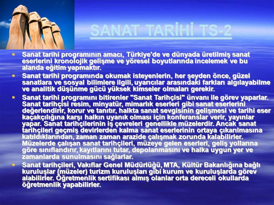 SANAT TARİHİ TS-2