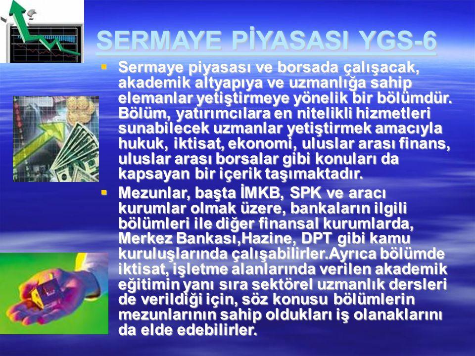 SERMAYE PİYASASI YGS-6