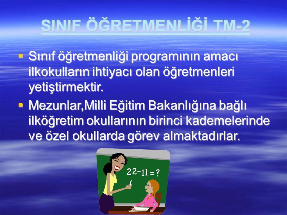 SINIF ÖĞRETMENLİĞİ TM-2