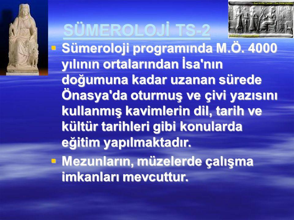 SÜMEROLOJİ TS-2