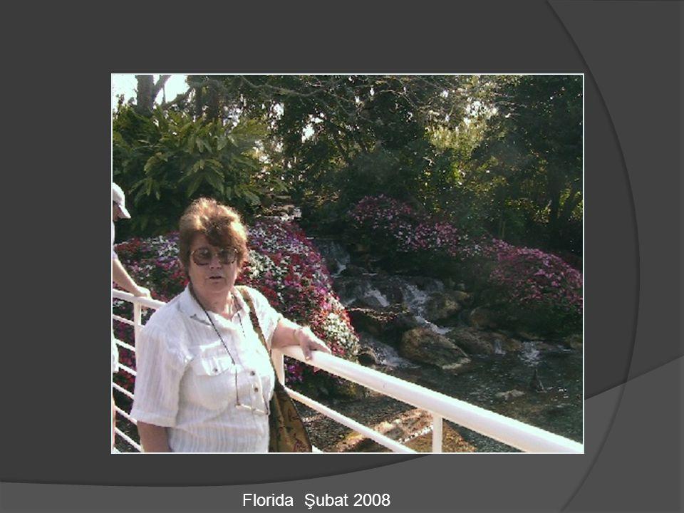 Florida Şubat 2008