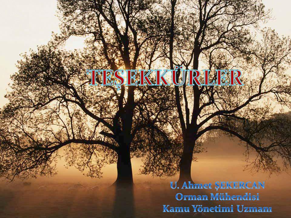 TEŞEKKÜRLER U. Ahmet ŞEKERCAN Orman Mühendisi Kamu Yönetimi Uzmanı