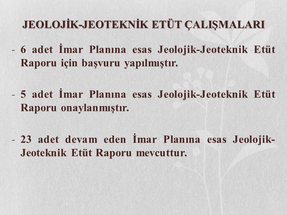 JEOLOJİK-JEOTEKNİK ETÜT ÇALIŞMALARI