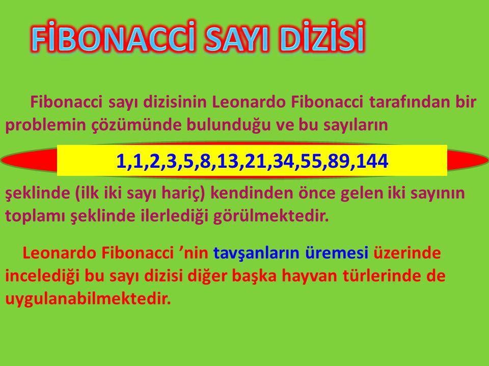 FİBONACCİ SAYI DİZİSİ Fibonacci sayı dizisinin Leonardo Fibonacci tarafından bir problemin çözümünde bulunduğu ve bu sayıların.