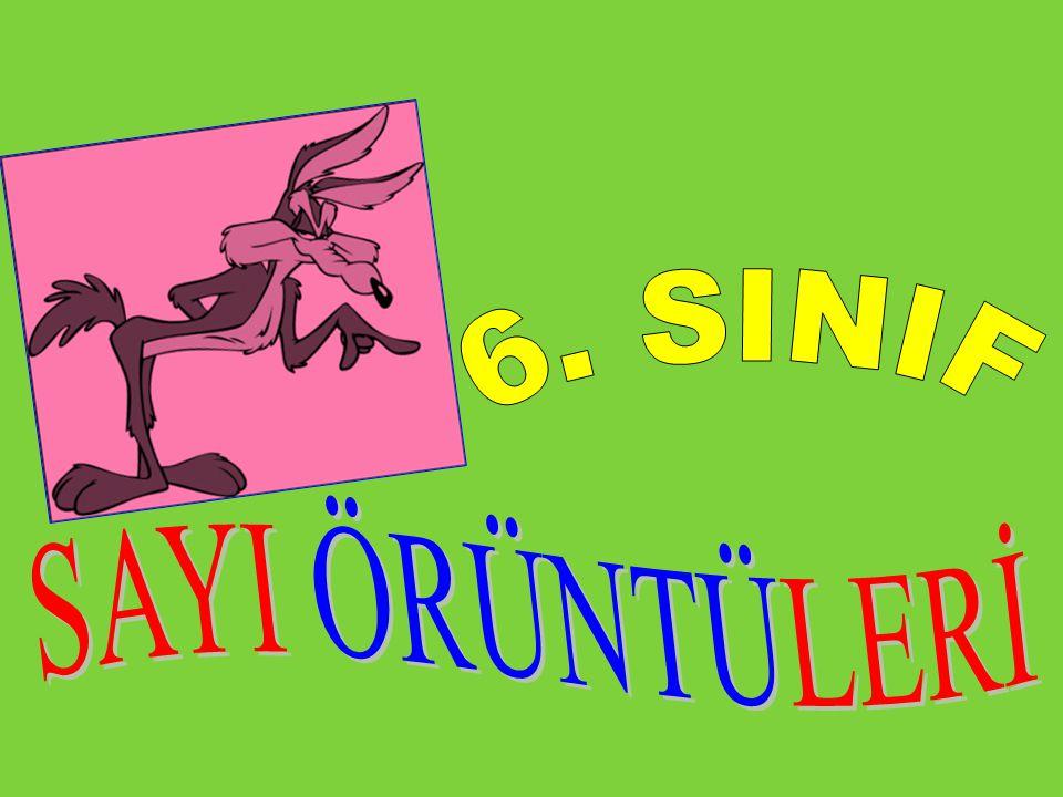 6. SINIF SAYI ÖRÜNTÜLERİ