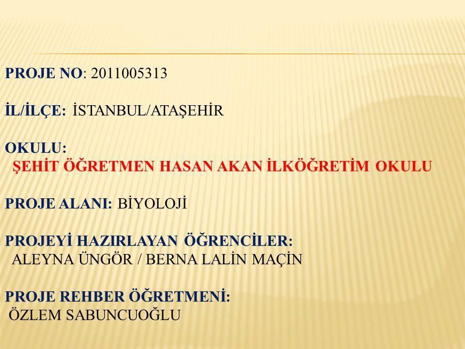 PROJE NO: 2011005313 İL/İLÇE: İSTANBUL/ATAŞEHİR. OKULU: ŞEHİT ÖĞRETMEN HASAN AKAN İLKÖĞRETİM OKULU.