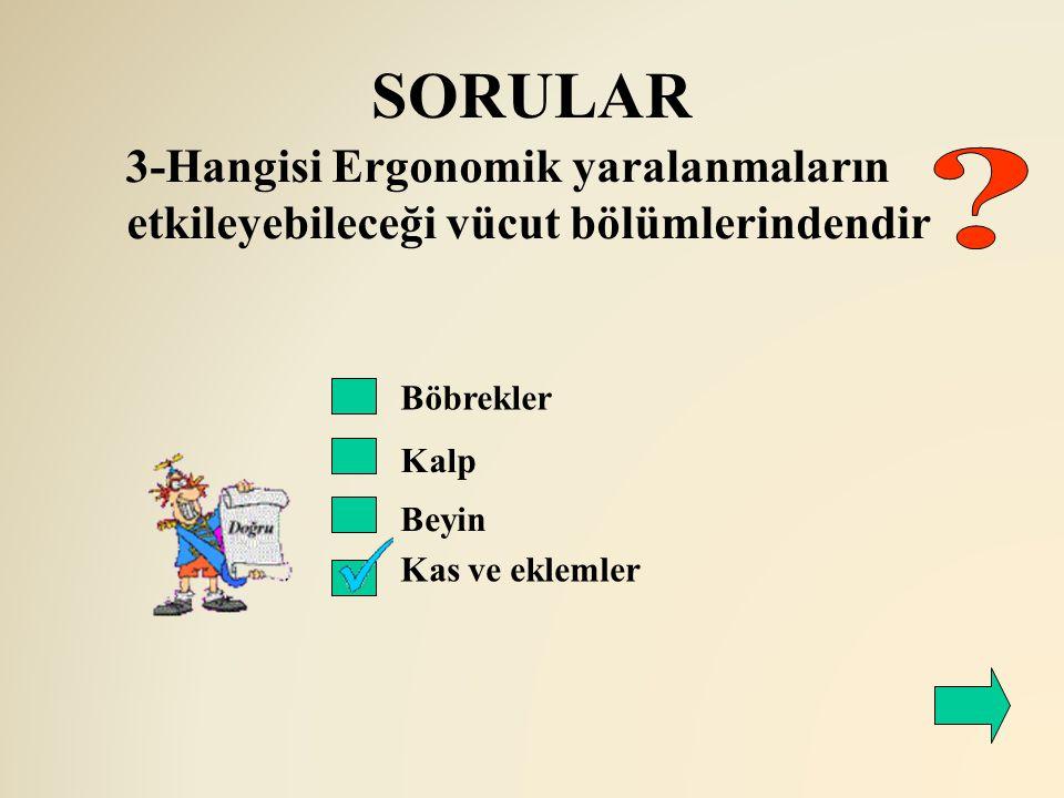 SORULAR 3-Hangisi Ergonomik yaralanmaların etkileyebileceği vücut bölümlerindendir. Böbrekler. Kalp.