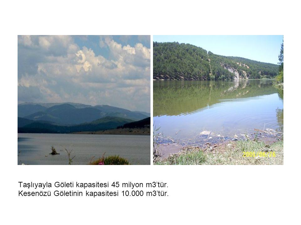 Taşlıyayla Göleti kapasitesi 45 milyon m3'tür.