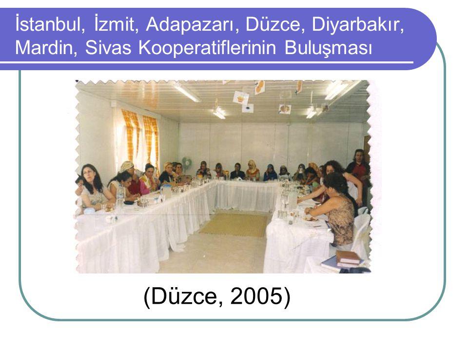 İstanbul, İzmit, Adapazarı, Düzce, Diyarbakır, Mardin, Sivas Kooperatiflerinin Buluşması