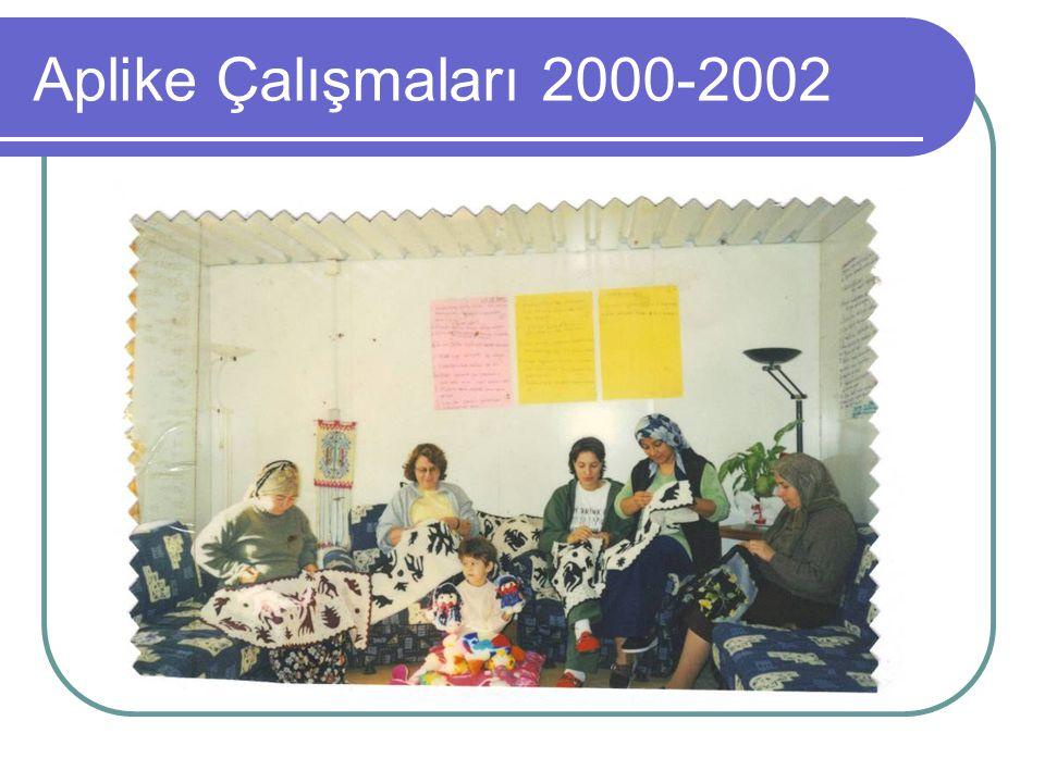 Aplike Çalışmaları 2000-2002