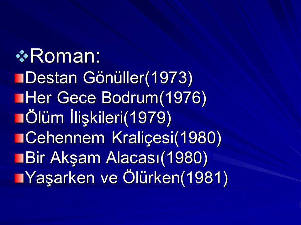 Roman: Destan Gönüller(1973) Her Gece Bodrum(1976)