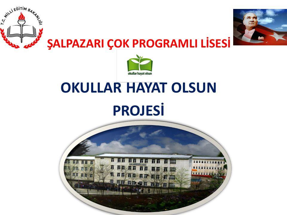 ŞALPAZARI ÇOK PROGRAMLI LİSESİ