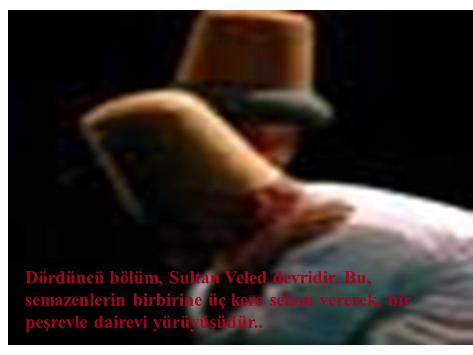 Dördüncü bölüm, Sultan Veled devridir