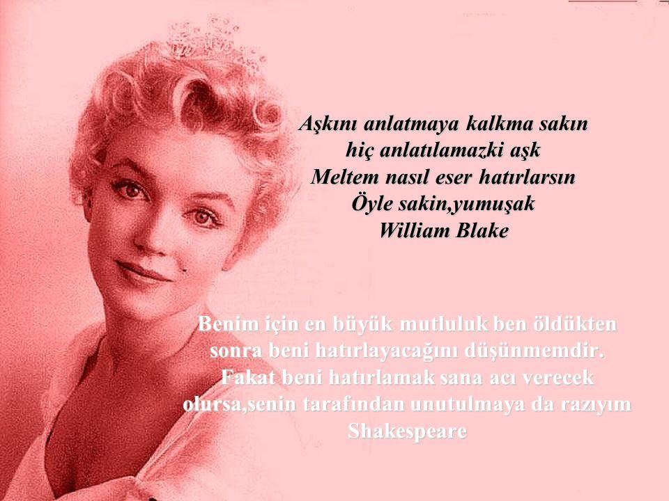 Aşkını anlatmaya kalkma sakın hiç anlatılamazki aşk Meltem nasıl eser hatırlarsın Öyle sakin,yumuşak William Blake