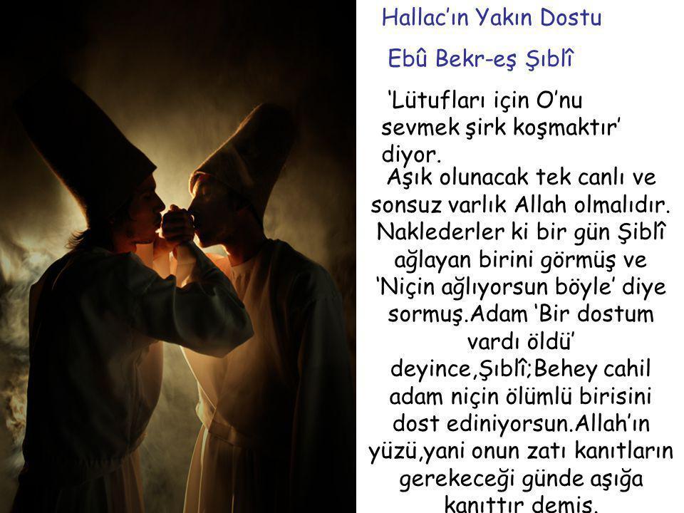 . Hallac'ın Yakın Dostu Ebû Bekr-eş Şıblî