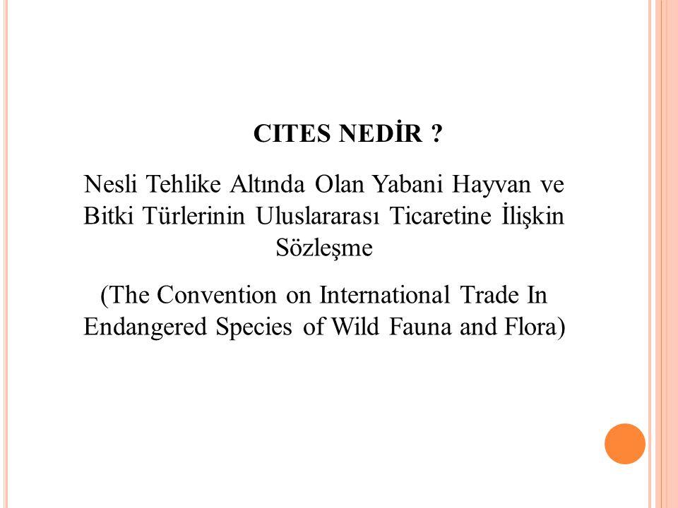 CITES NEDİR Nesli Tehlike Altında Olan Yabani Hayvan ve Bitki Türlerinin Uluslararası Ticaretine İlişkin Sözleşme.