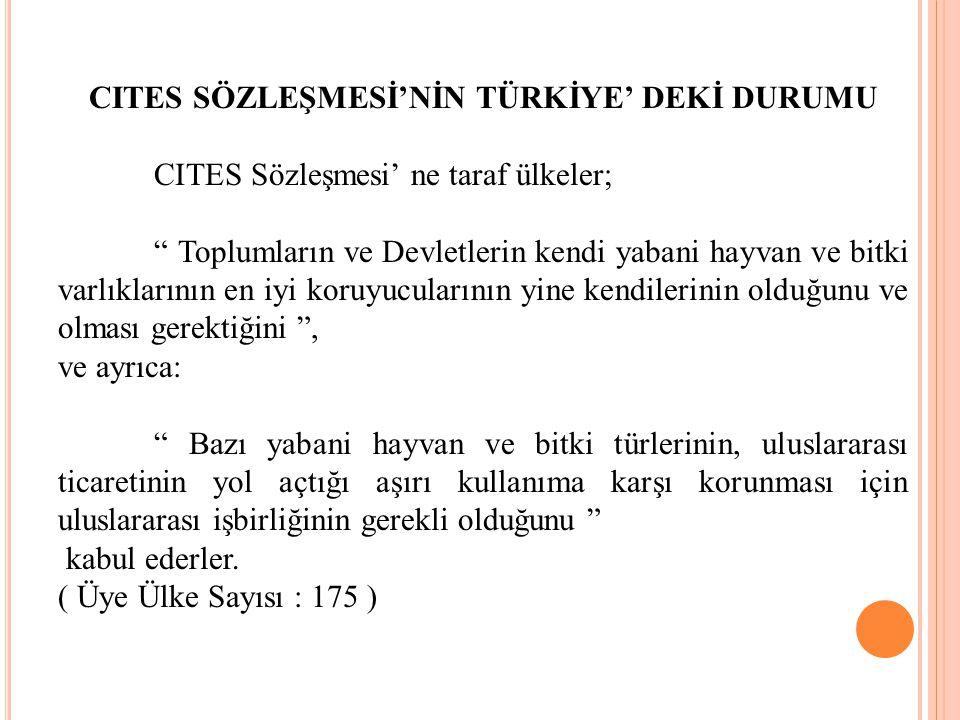 CITES SÖZLEŞMESİ'NİN TÜRKİYE' DEKİ DURUMU
