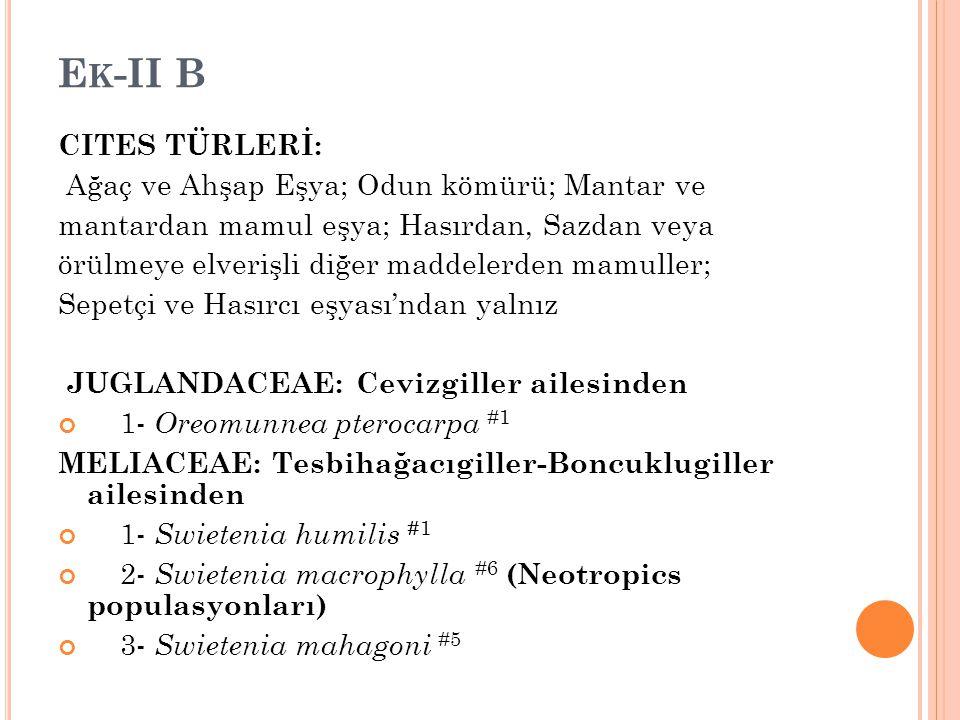 Ek-II B CITES TÜRLERİ: Ağaç ve Ahşap Eşya; Odun kömürü; Mantar ve