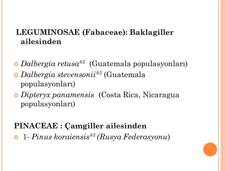LEGUMINOSAE (Fabaceae): Baklagiller ailesinden