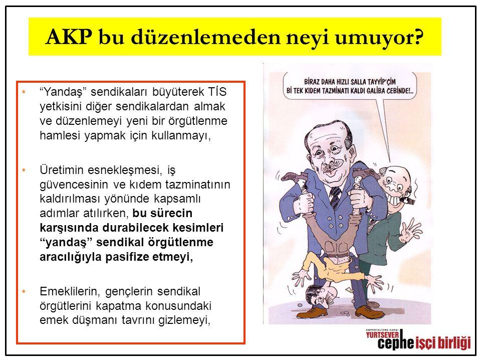 AKP bu düzenlemeden neyi umuyor