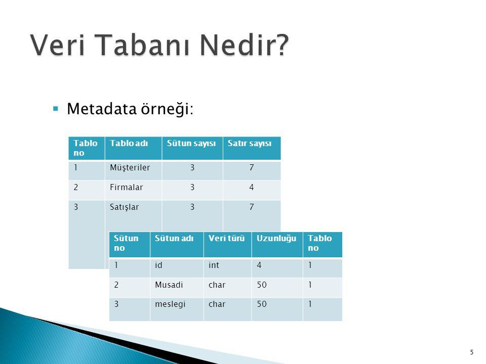 Veri Tabanı Nedir Metadata örneği: Tablo no Tablo adı Sütun sayısı
